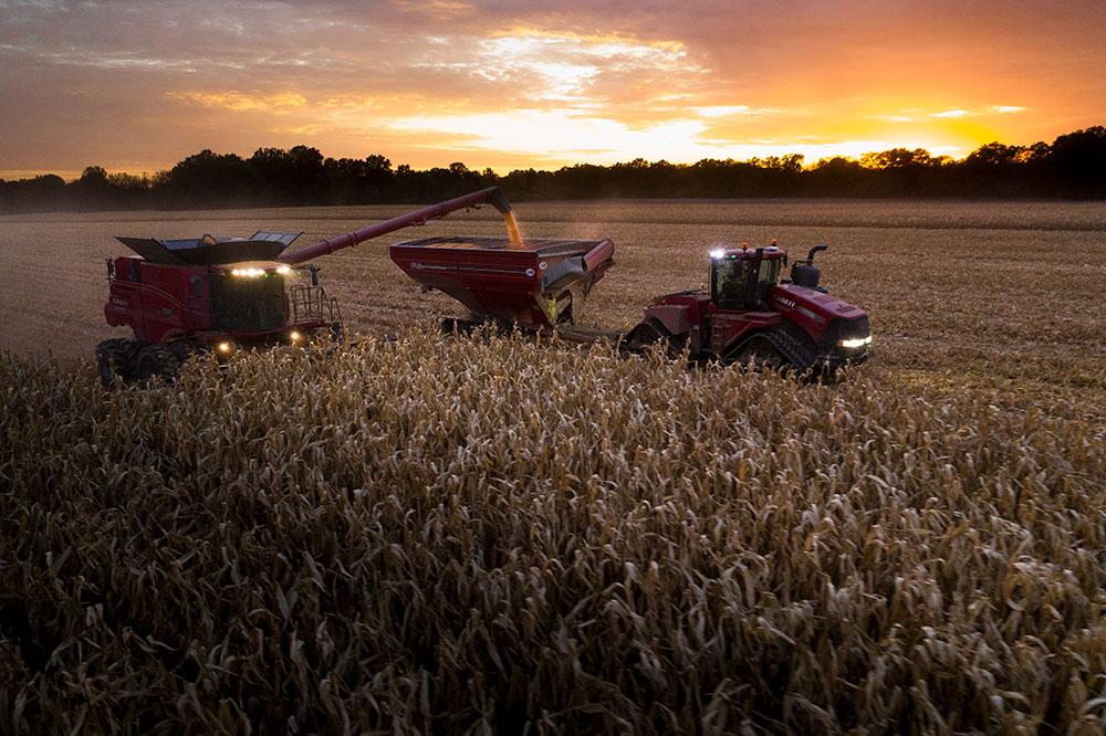 NL Corn Harvest